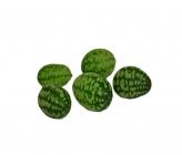 Specials Cucumber Mouse Melon